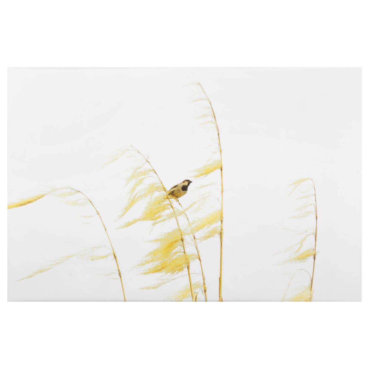 Bird on Wheat Printed Canvas