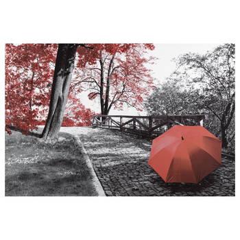 Tableau imprimé Sentier d'automne