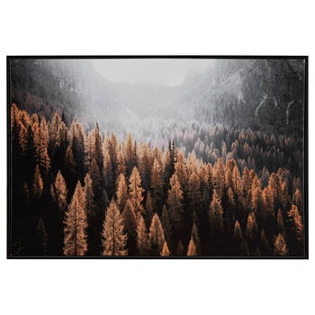 Autumn Forest Printed Framed Art