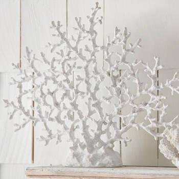 Gros corail décoratif