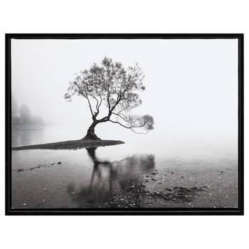 Misty Morning Framed Art