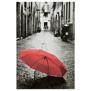 Umbrella Printed Canvas