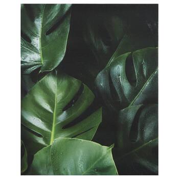 Monstera Leaves Printed Canvas