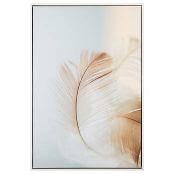 Feather Printed Framed Art