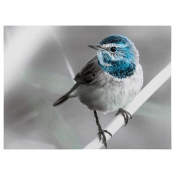 Blue Bird on Branch Printed Canvas
