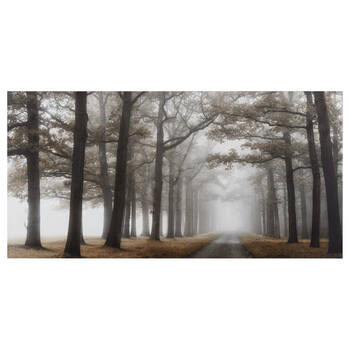 Mystical Pathway Printed Canvas