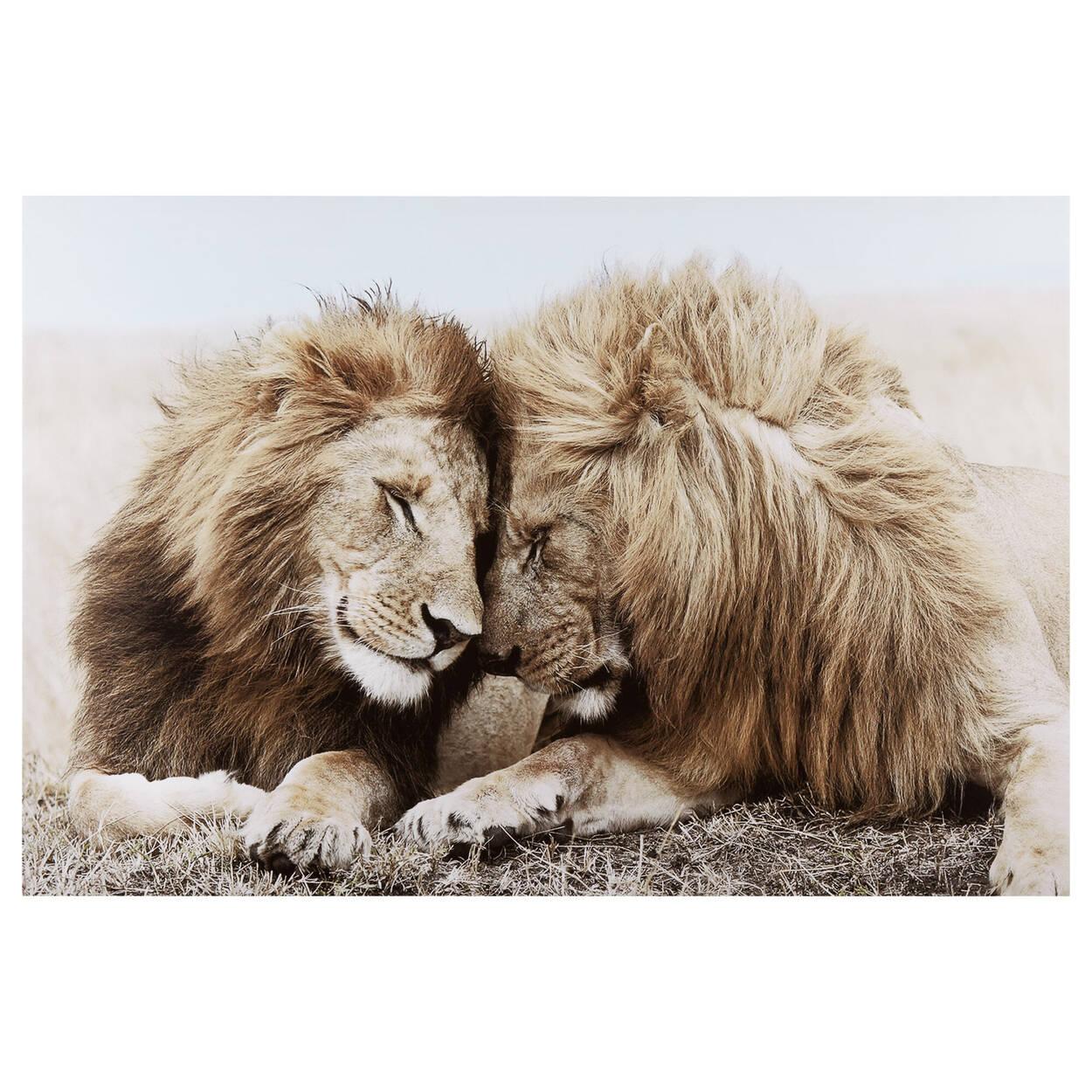 Tableau imprimé deux lions