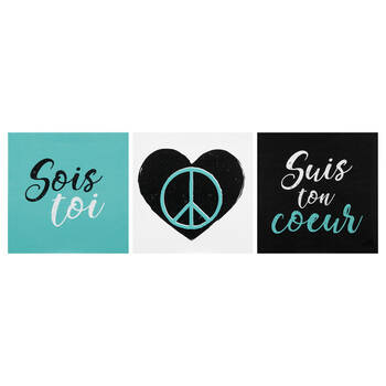 Set of 3 Canvases Sois Toi