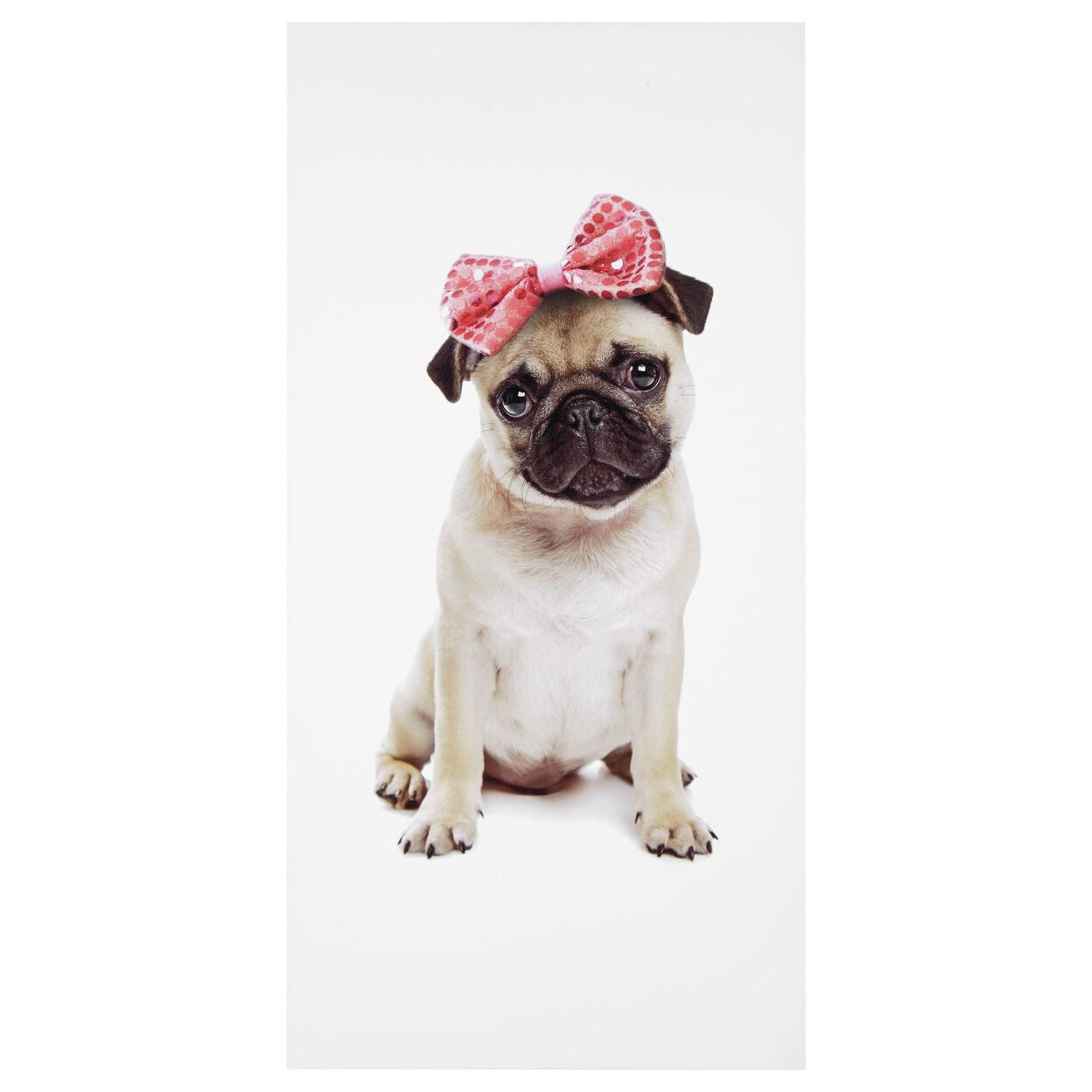 Pug with Bow Canvas