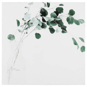 Eucalyptus Printed Canvas