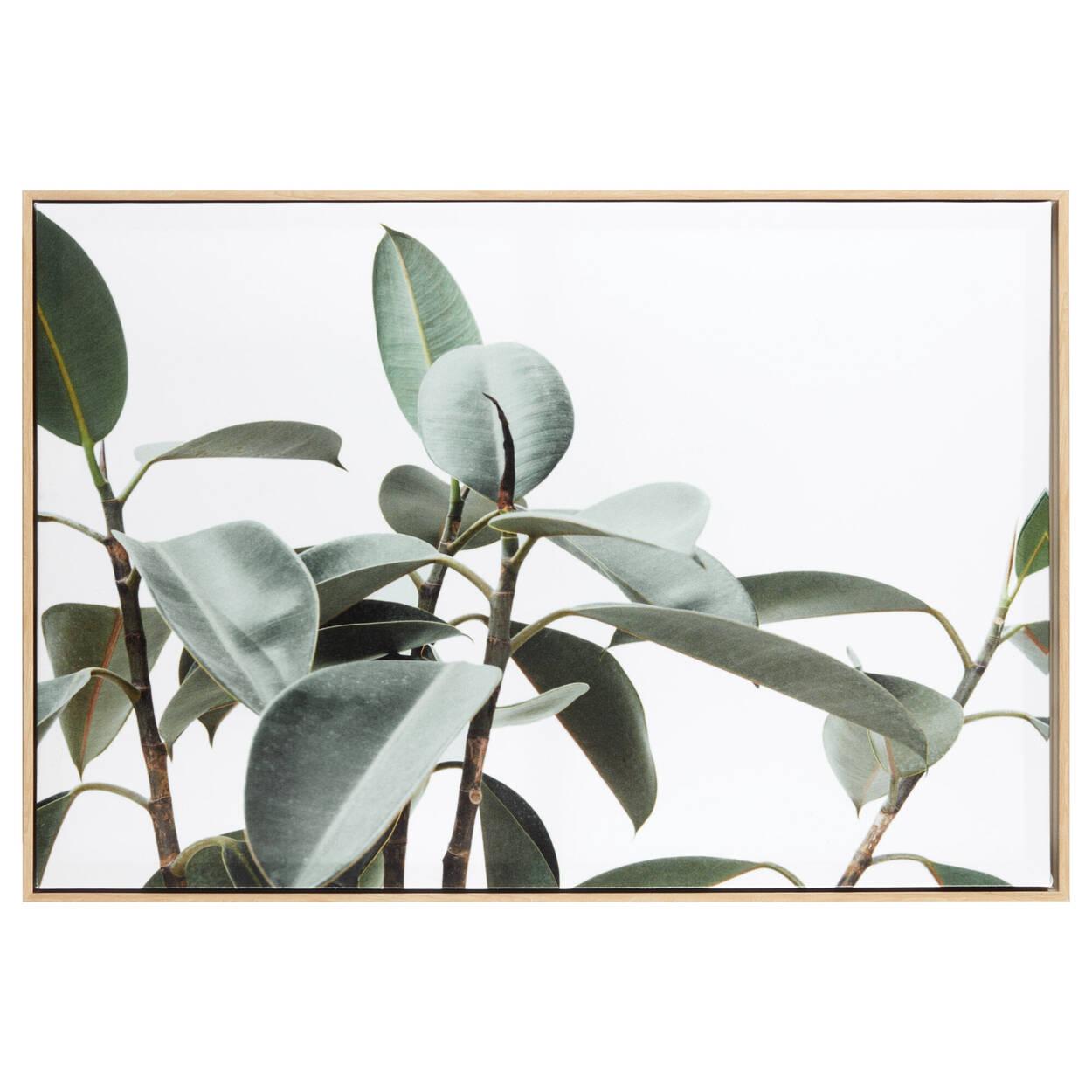 Cadre imprimé feuilles