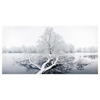 Saarland Frozen Lake Printed Canvas