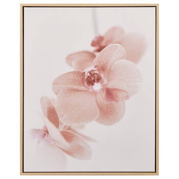 Pink Forget-Me-Not Framed Canvas