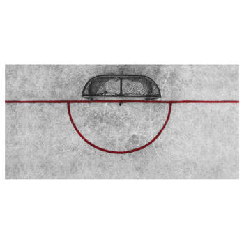Hockey Net Printed Canvas