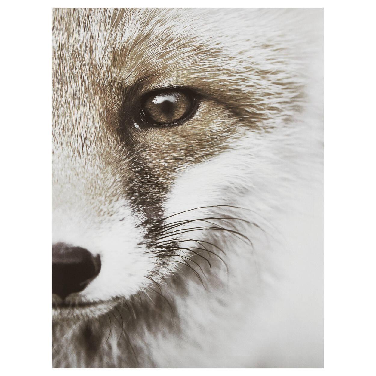 Tableau imprimé renard en gros plan