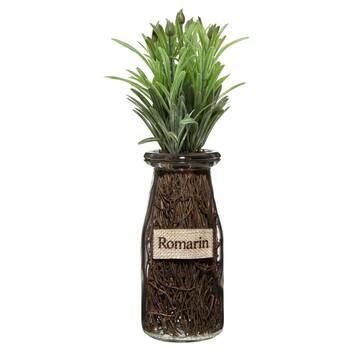 Rosemary in Glass Pot