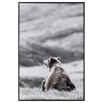 Bear in a Field Printed Framed Art
