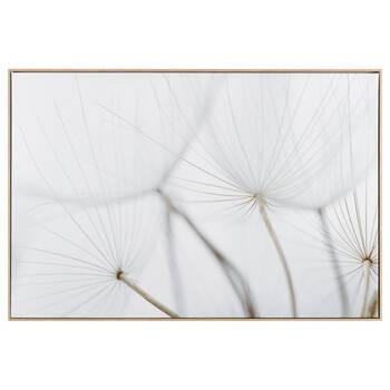 Dandelions Closeup Framed Canvas