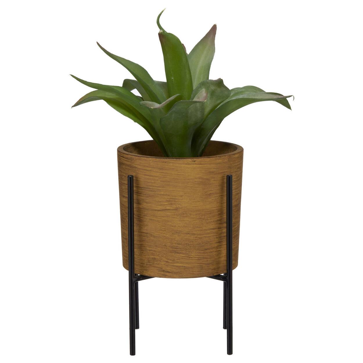 Plante en pot sur support métallique