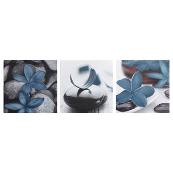 Set of 3 Floral Canvases