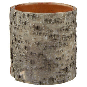 Birch Bark and Glass Candle