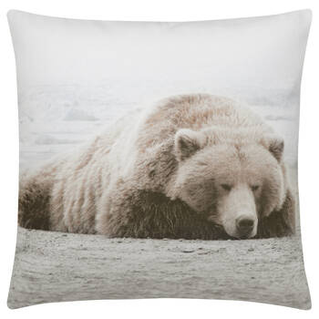 "Sleepy Bear Decorative Pillow 19"" x 19"""
