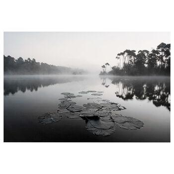 Pond Printed Canvas