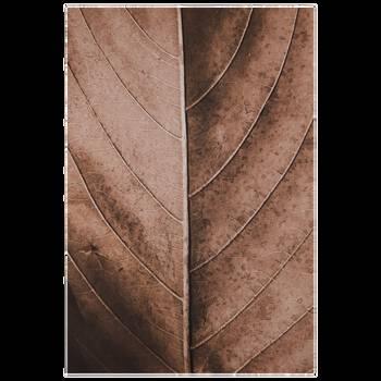 Tableau imprimé d'une feuille d'automne