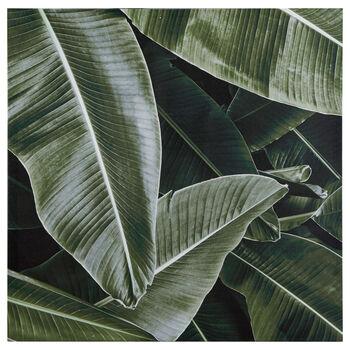 Palm Leaf Printed Canvas