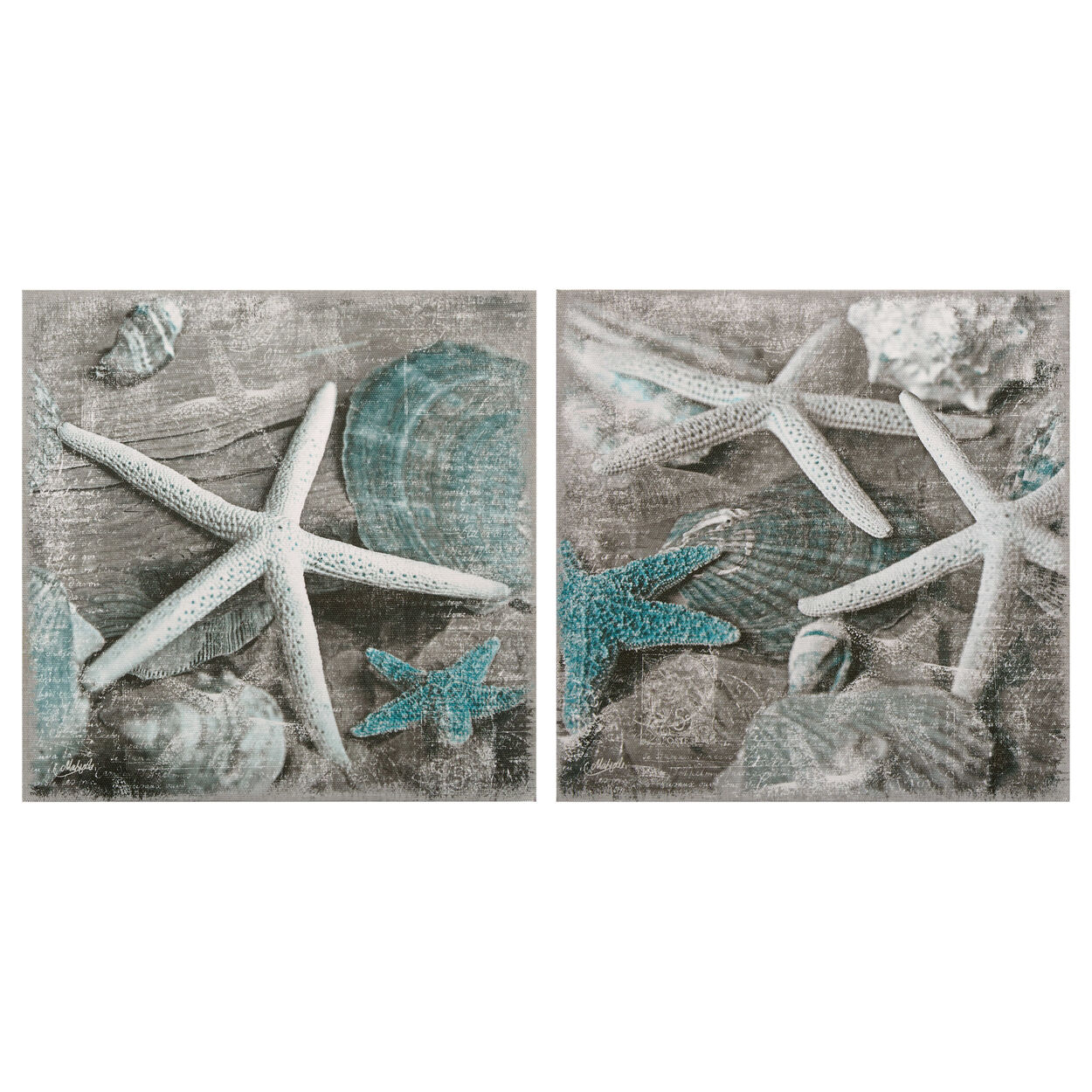 Set of 2 Starfish Canvases