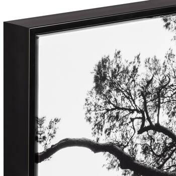 Beautiful Old Pine Framed Art
