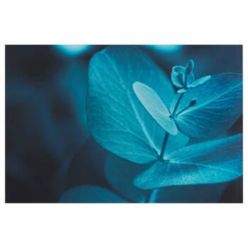Blue Eucalyptus Printed Canvas