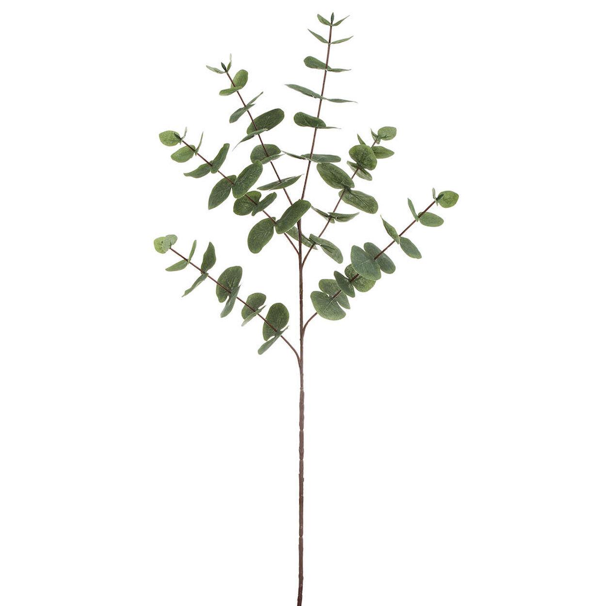 tige d'eucalyptus artificielle   bouclair