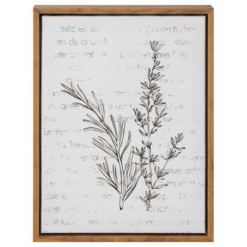 Herbs Framed Art