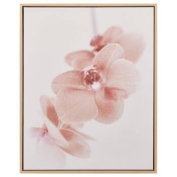 Pink Forget-Me-Not Framed Canvas