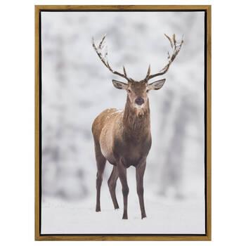 Pensive Deer Printed Canvas