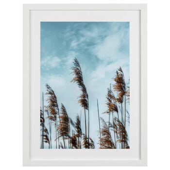 In The Wind Printed Framed Art Under Glass