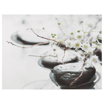 Zen Rocks And Blossoms Printed Canvas