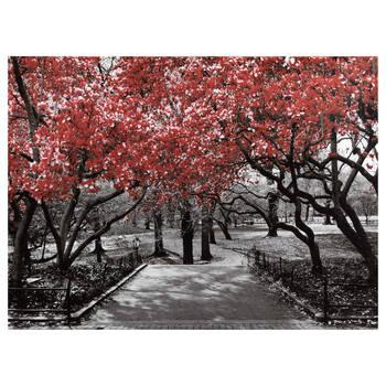 Tableau imprimé de Central Park avec embellissements au gel