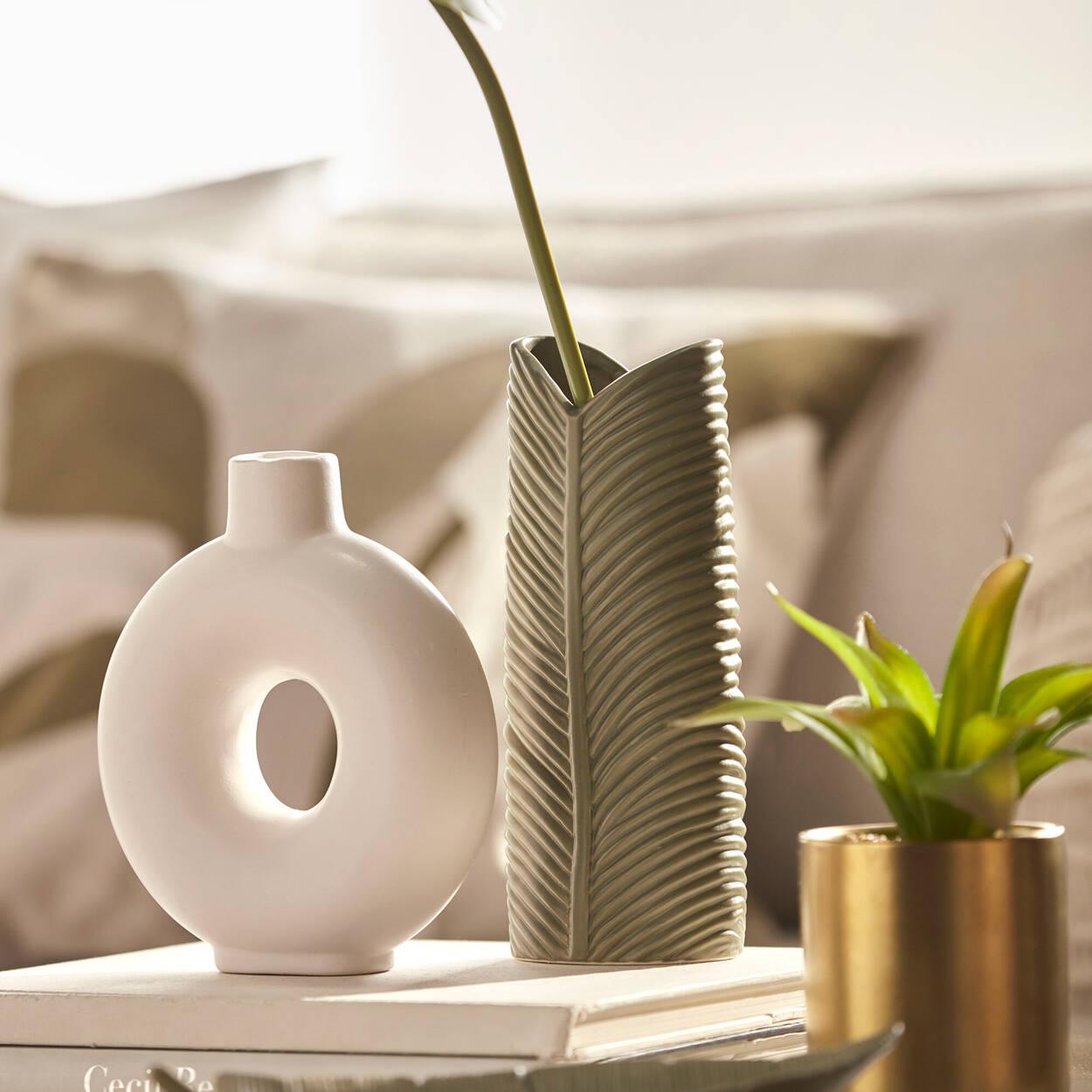 Agave avec pot en céramique