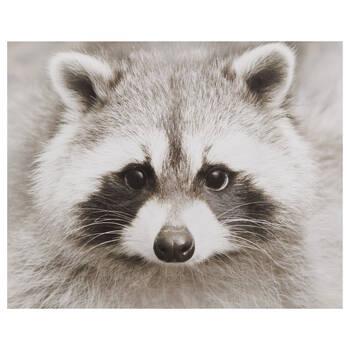 Raccoon Printed Canvas