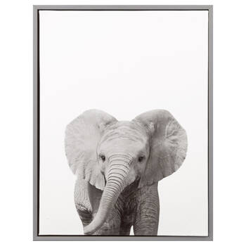 Baby Elephant Framed Art