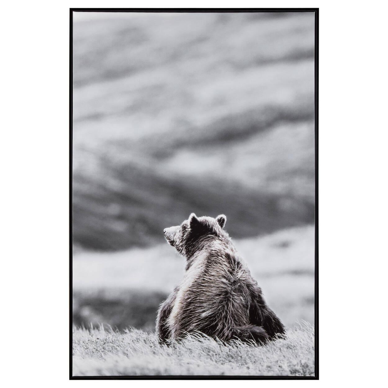 Cadre imprimé d'un ours dans le champ
