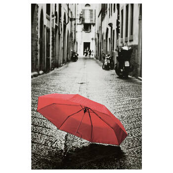 Umbrella Printed Canvas