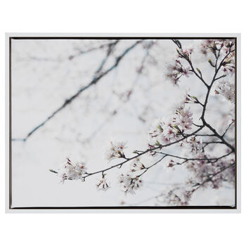 Cherry Blossoms Printed Framed Art
