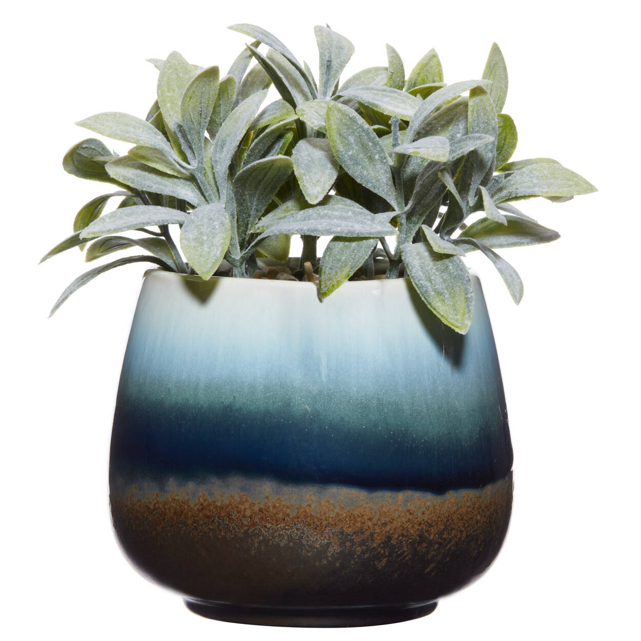 Plant in Reactive 3-Tone Ceramic Pot 12 x 15 cm.