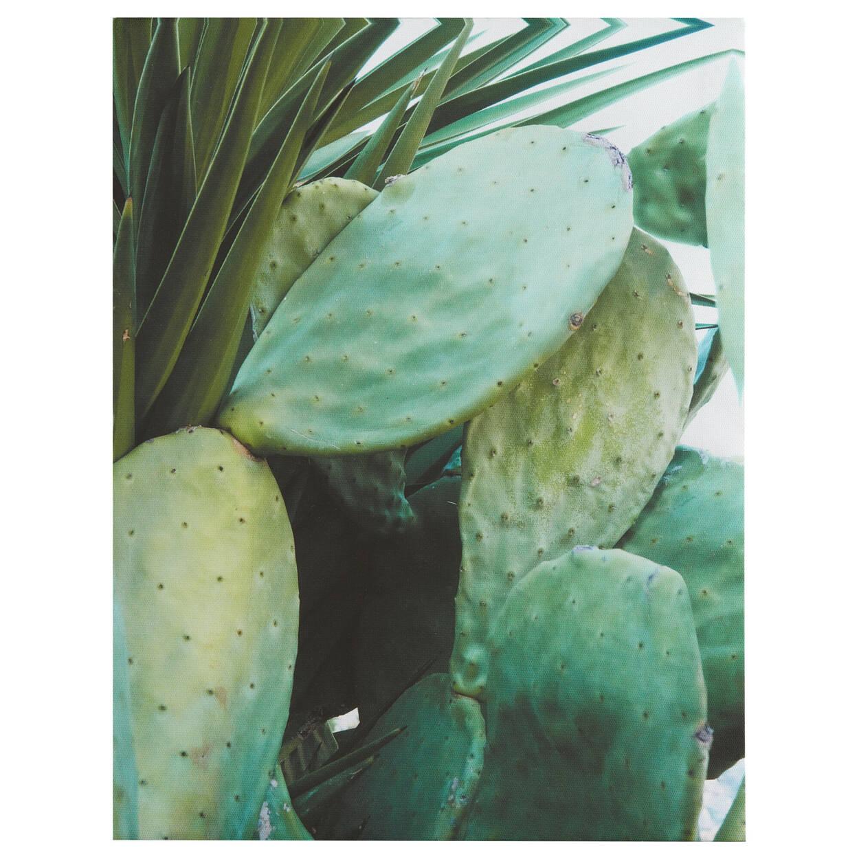 Cactus Printed Canvas