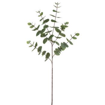 Tige d'eucalyptus artificielle