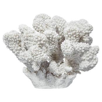 Decorative Coral