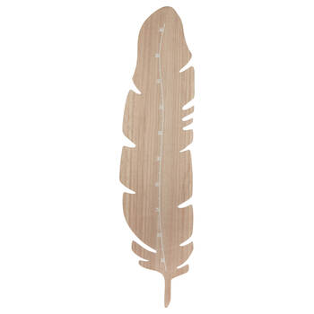 Wooden Feather Shaped Growth Chart